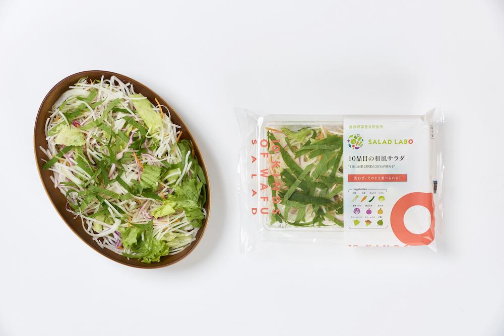 10品目の和風サラダ商品写真